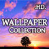Exquisite Wallpapers Collection HD